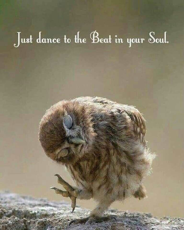 Photo of Whatever the dance may be and with whomever the dance will be wth – love the lif…