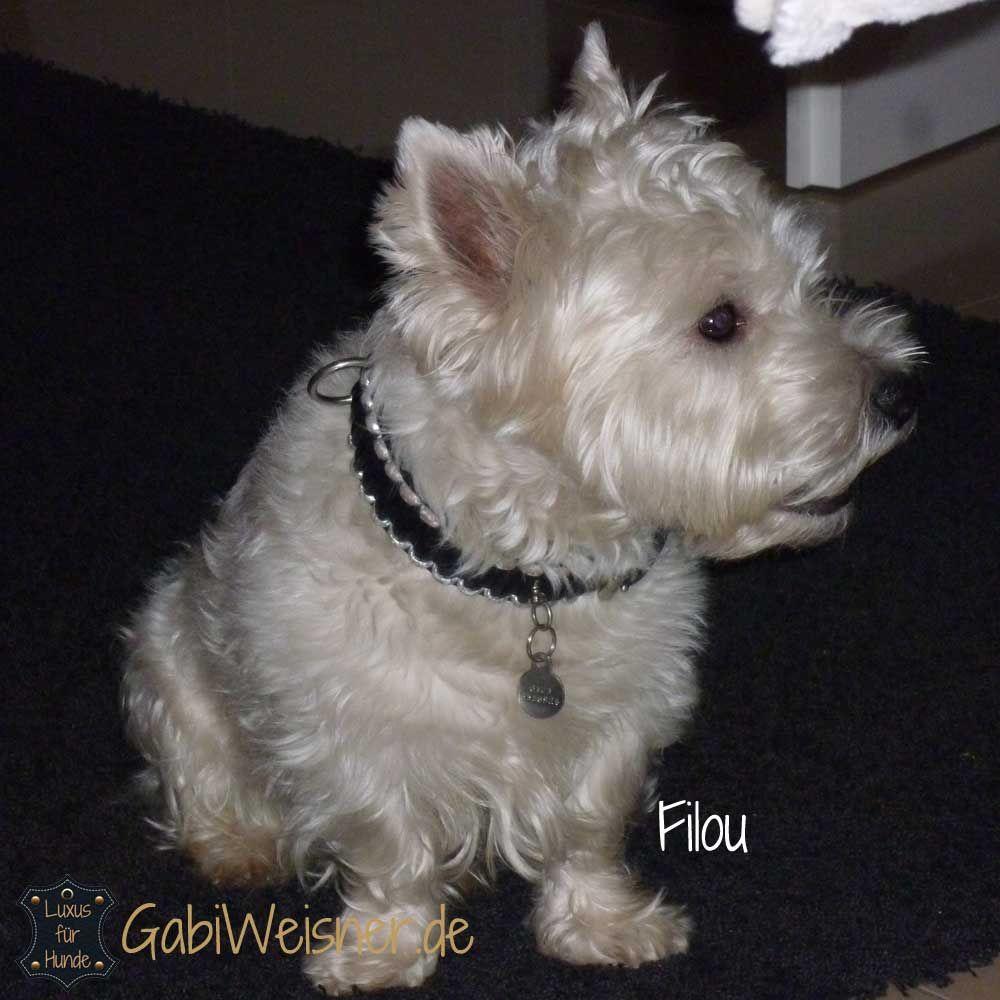 Exklusives Hundehalsband Leder 3 cm breit in Schwarz