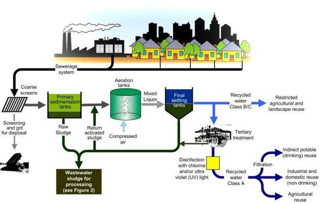 process flow diagram wwtp