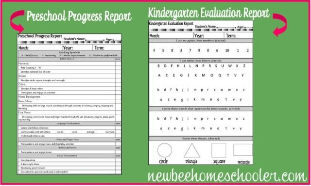 Progress Report Sample For Preschool