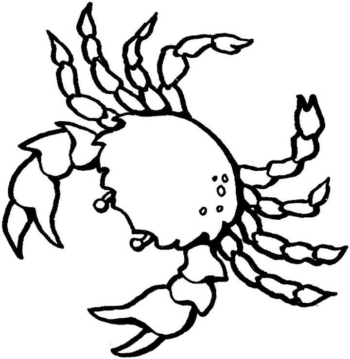 Free Printable Coloring Pages Under The Sea Ocean For Kids
