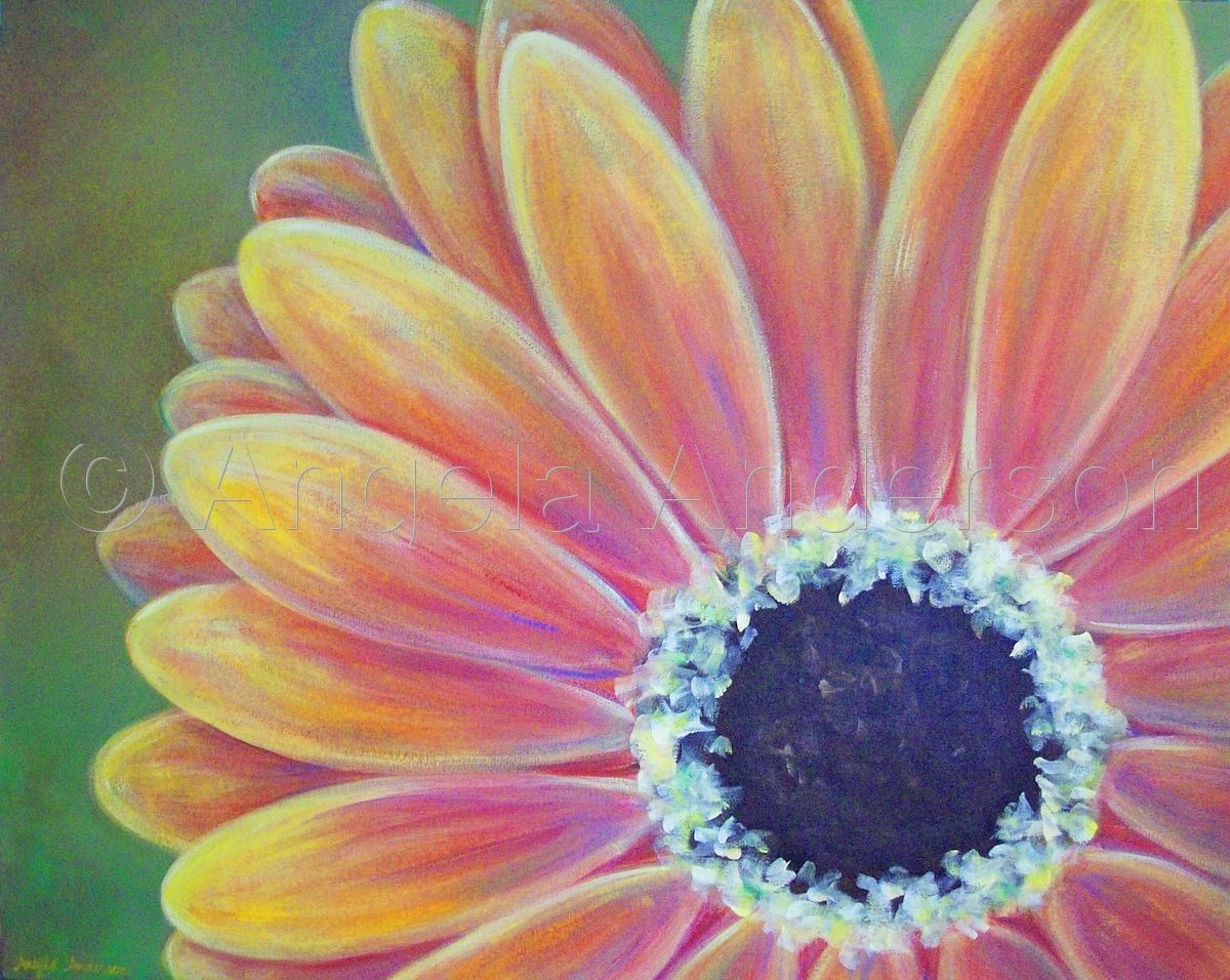 Gerber Daisy Painting By Angela Anderson Daisy Painting