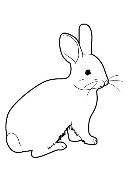 Coloriage lapin 15 plastique fou easter drawings - Coloriages lapin ...
