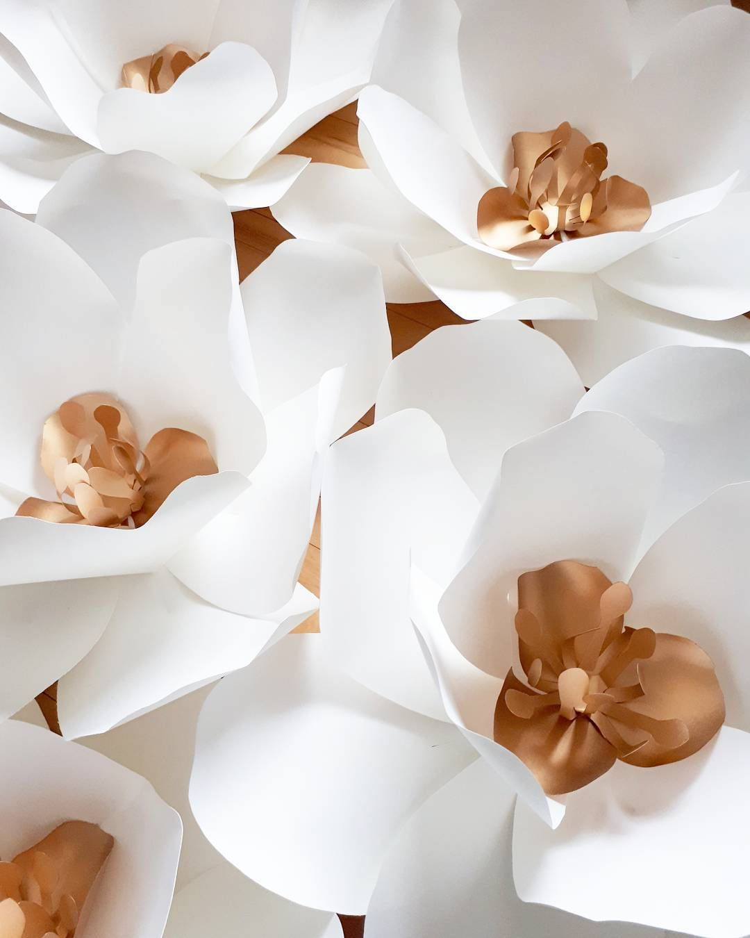 Large Paper Flower Backdrop White And Gold Gold Paperflowers