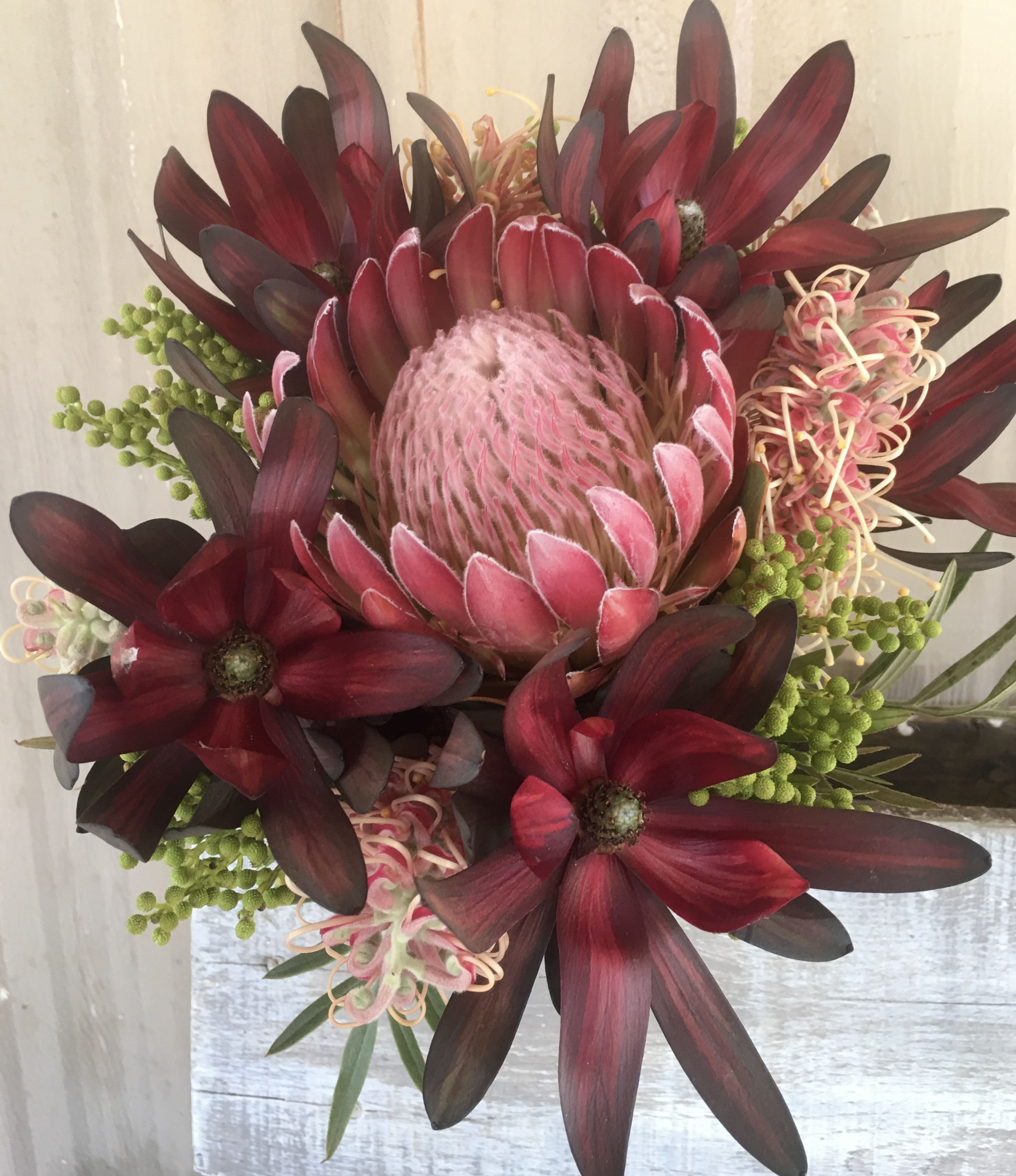 Mixed Protea Bouquets by Diana Roy in 2020 Protea
