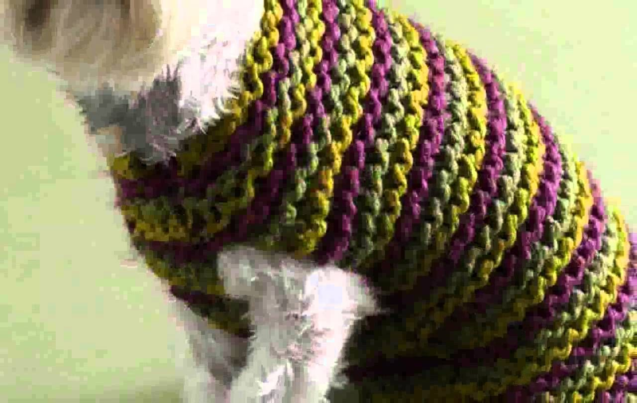 Crochet Dog Sweater Free Pattern Easy - New Pictures ...