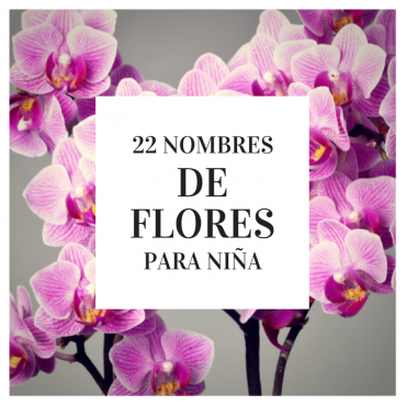 22 nombres de flores para ni a blog de babycenter baby for Nombres d plantas ornamentales