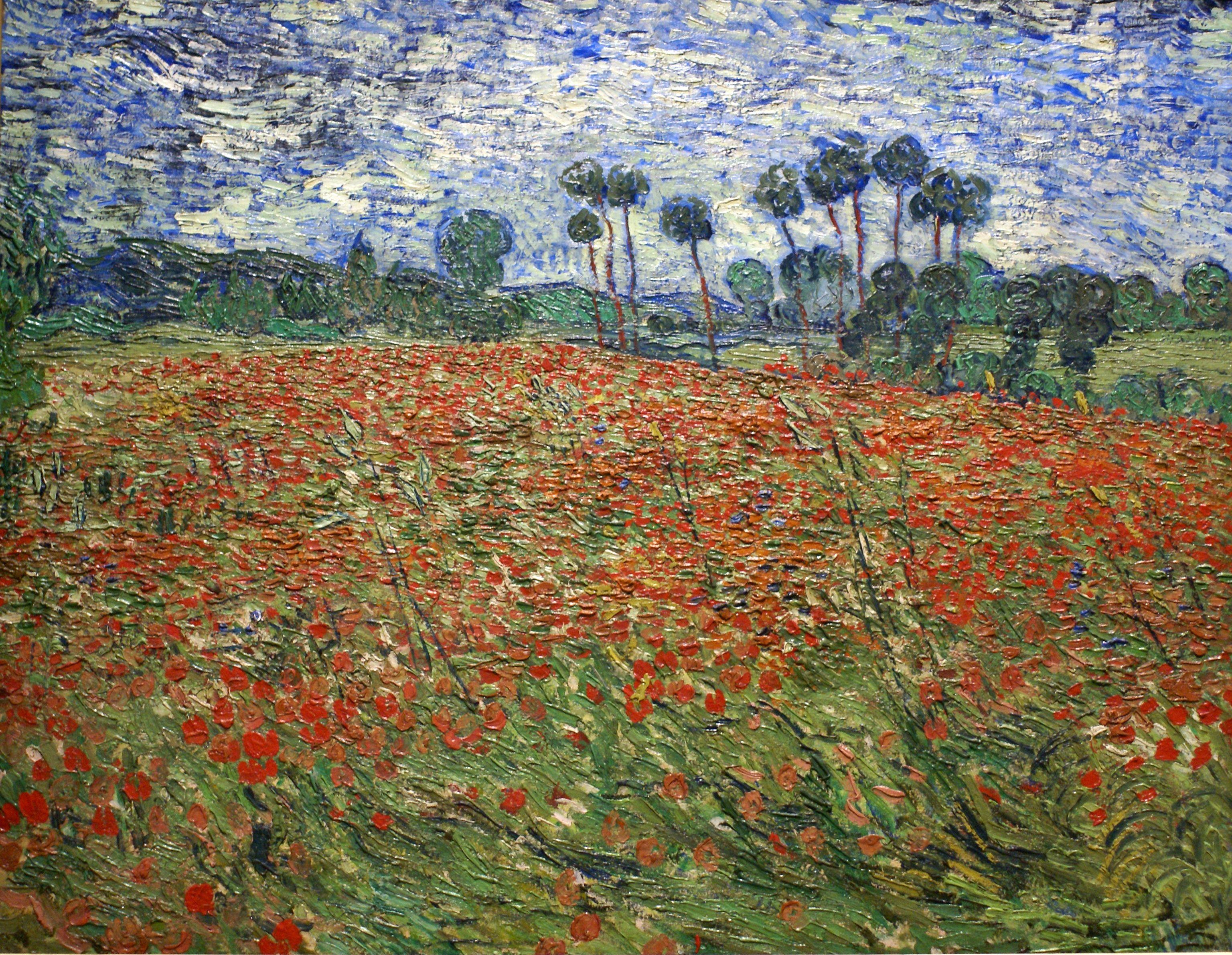 Vincent Van Gogh Mohnblumenfeld Poppy Field Avec Images Art De Van Gogh