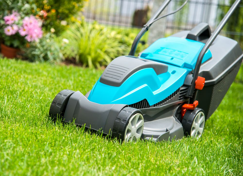 7 Lawn Care Myths Debunked Lawn Mower Lawn Care Lawn Maintenance