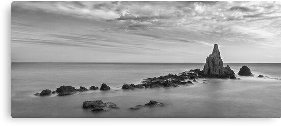 Lienzo en blanco y negro del arrecife de las sirenas