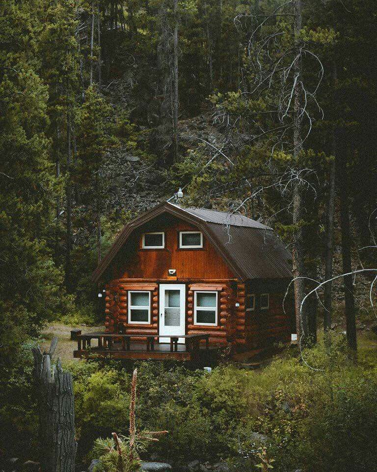 Pin di julia cavasin su casette log homes tiny house for Stili di arredamento interni