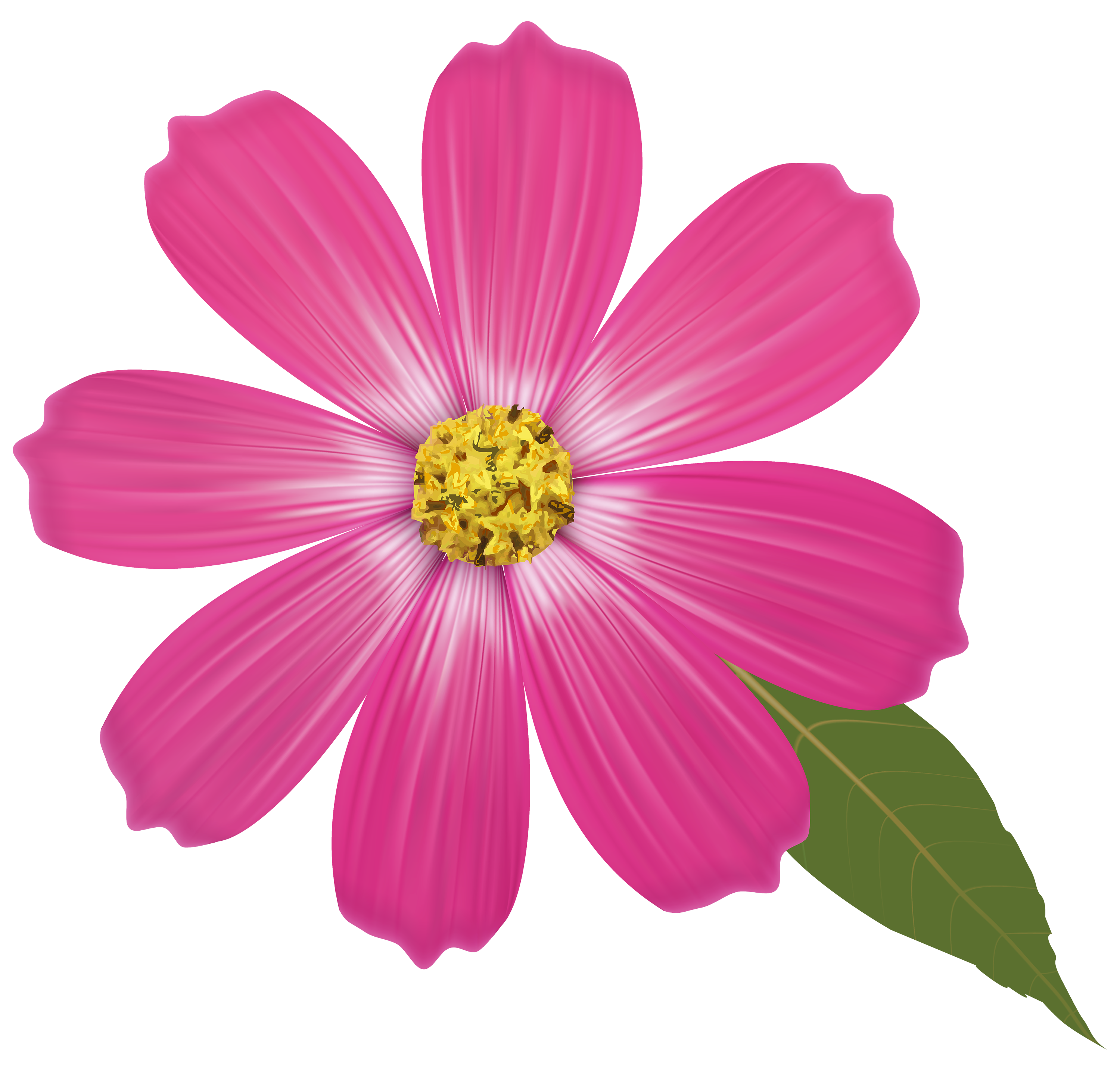 Pink Flower PNG Clipart Flower clipart images, Flower