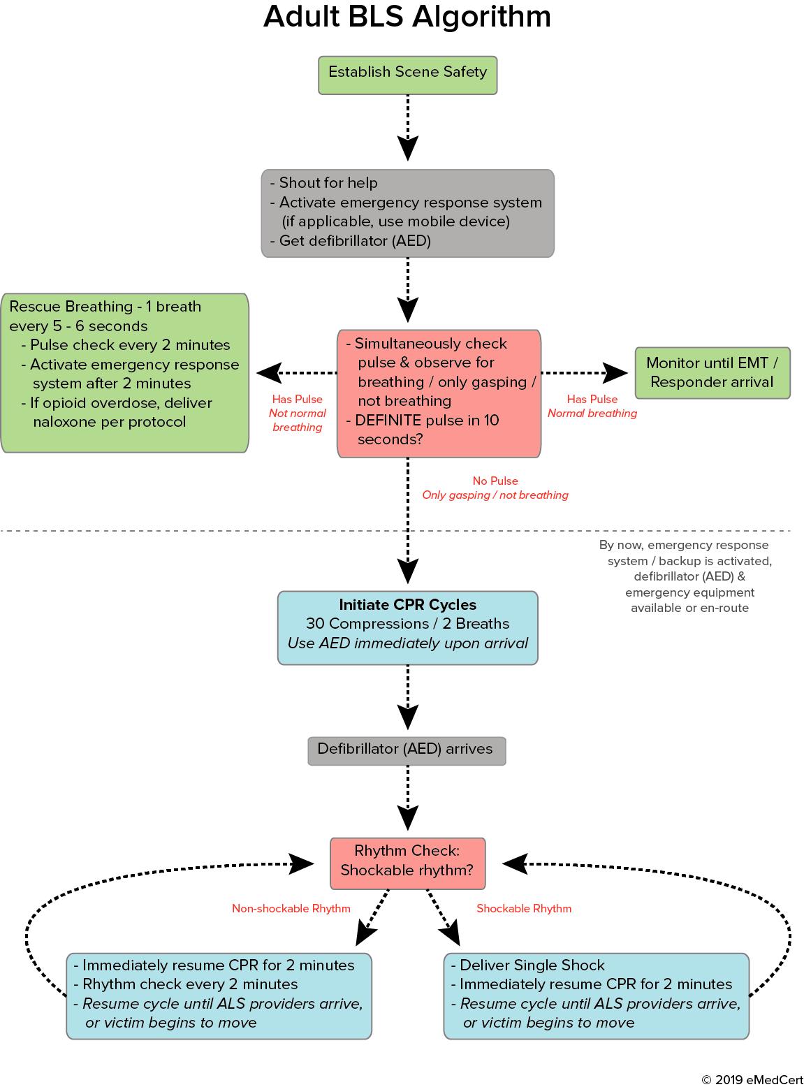The Ultimate BLS Cheatsheet Acls algorithm, Acls