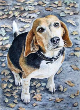 Beagle Autumn Painting By Nicole Zeug Dog Paintings Beagle Art
