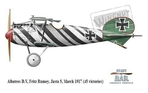 Albatros D.V by Ronny Bar