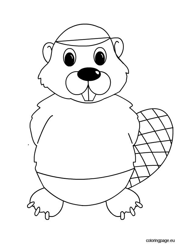 Canadian Beaver Coloring Page Animal Coloring Pages Coloring