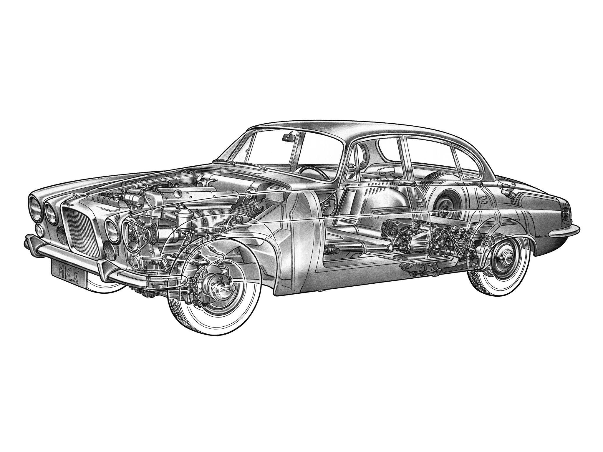 Line Drawing Jaguar : Jaguar mark illustrator uncredited cutaway line