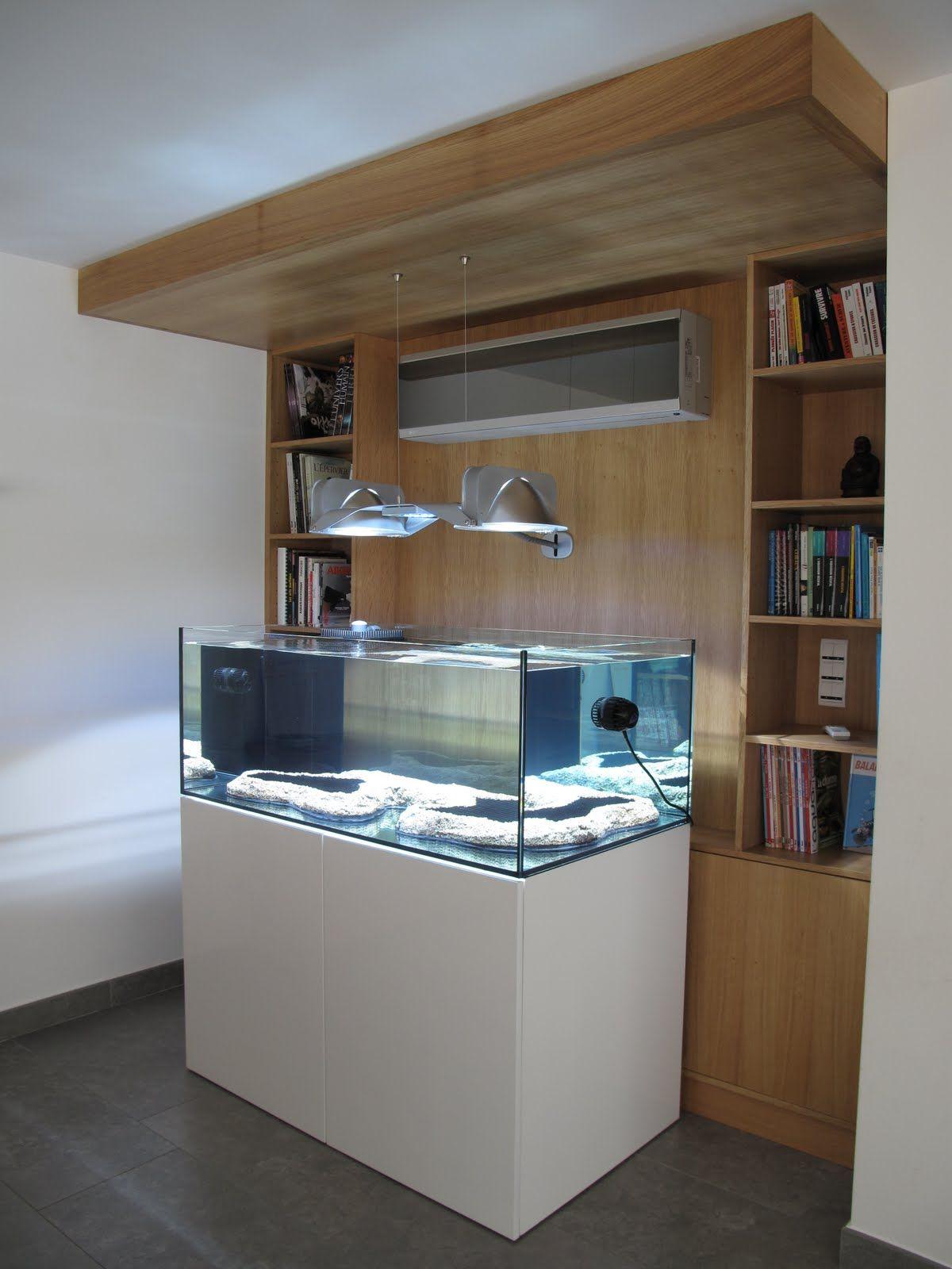 modern reef aquarium Aquarium Pinterest