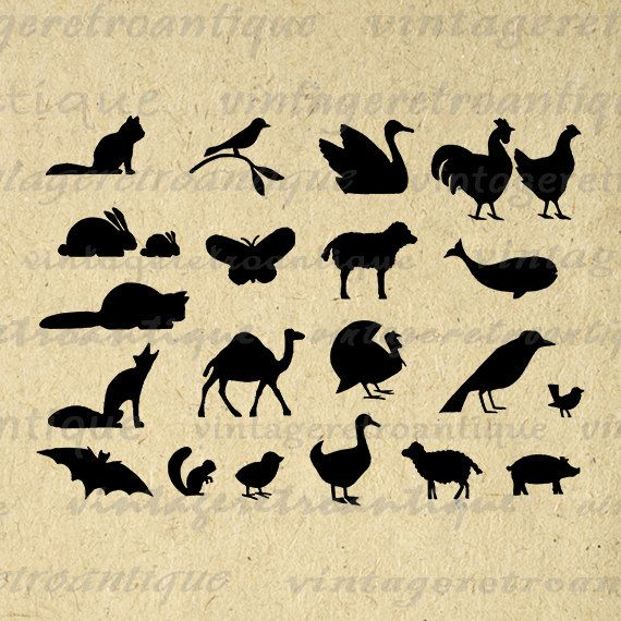 Animal Silhouettes Collage Sheet Digital Graphic Download Animals Printable Image Vintage Clip Art Jpg Png Eps 18x18 HQ 300dpi No.2103 @ vintageretroantique.etsy.com