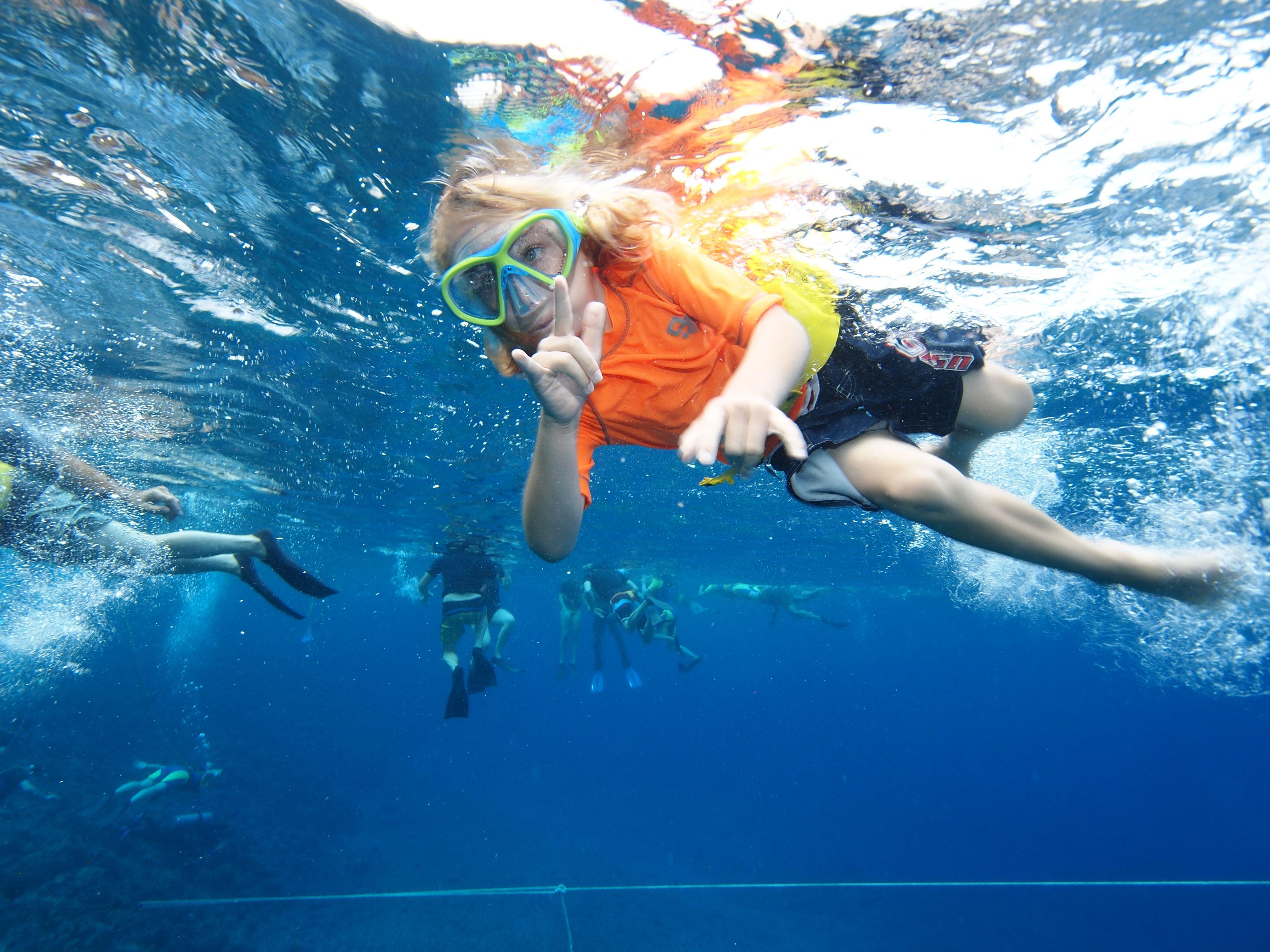 Tours, Snorkeling, Cool Kids