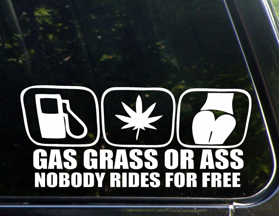 A hilarious bumper sticker reminding people that nobody rides for free