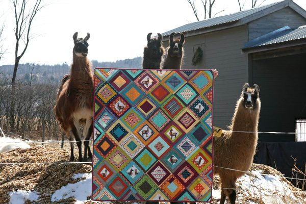 Llama fabric, actual live llamas... nuff said. By this talented quilter.