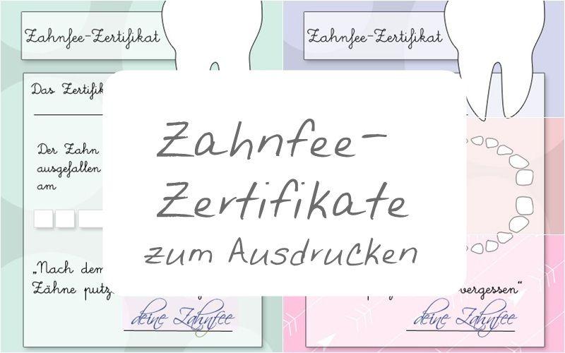 Brief Von Der Zahnfee Milchzahndosen 4