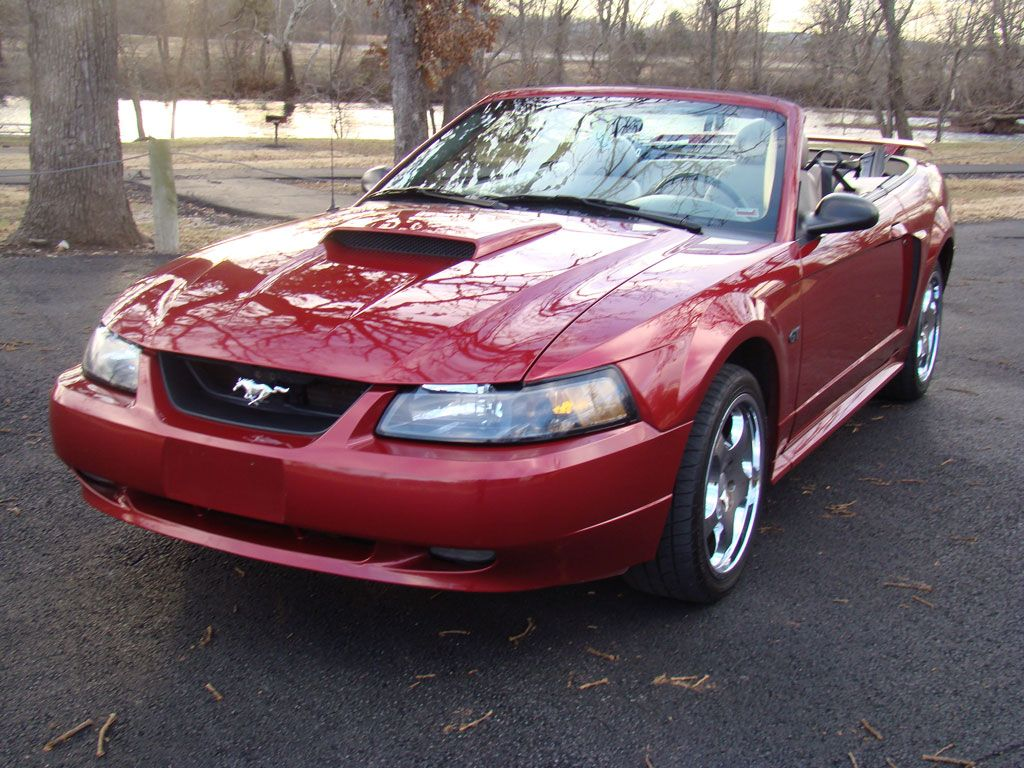 2003 ford mustang a century of change pinterest 2003. Black Bedroom Furniture Sets. Home Design Ideas