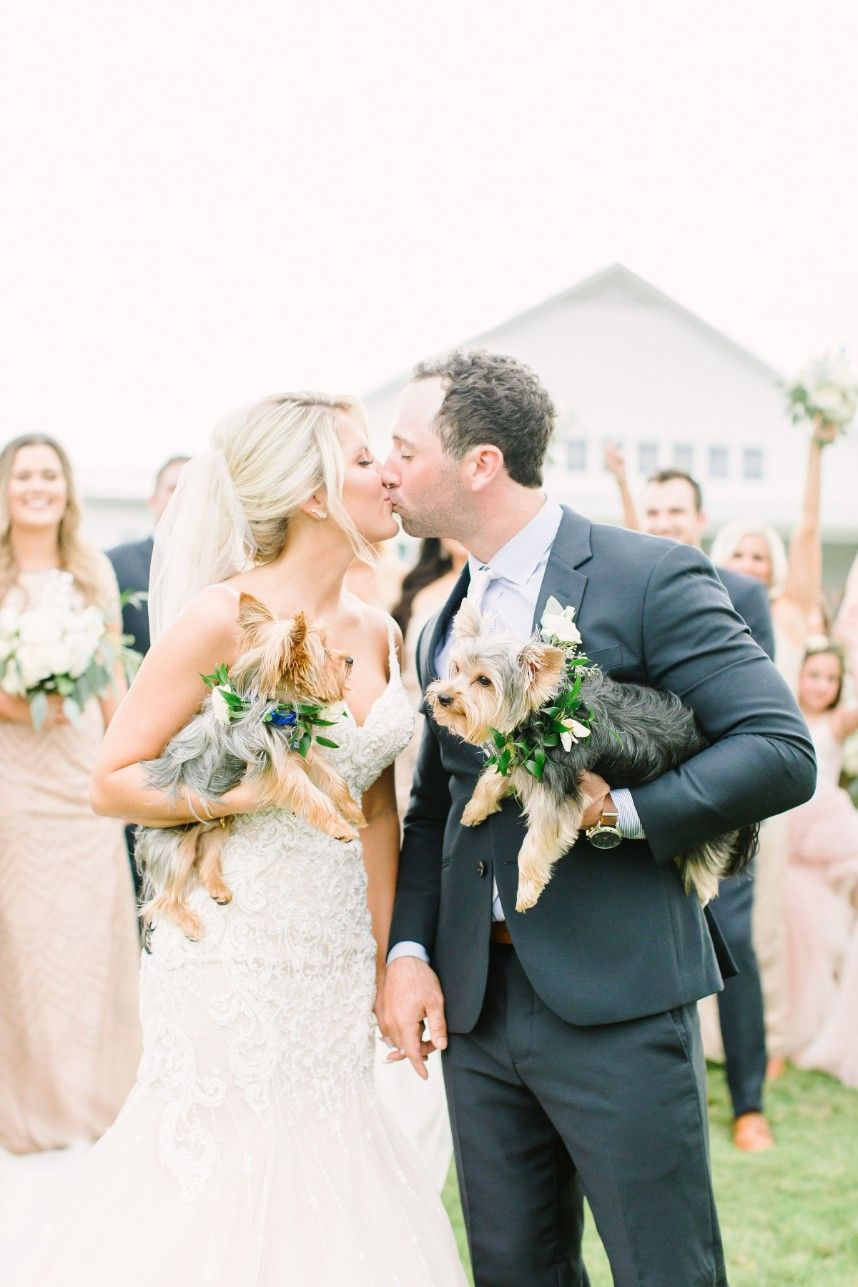 modern farmhouse inspired wedding from kate elizabeth