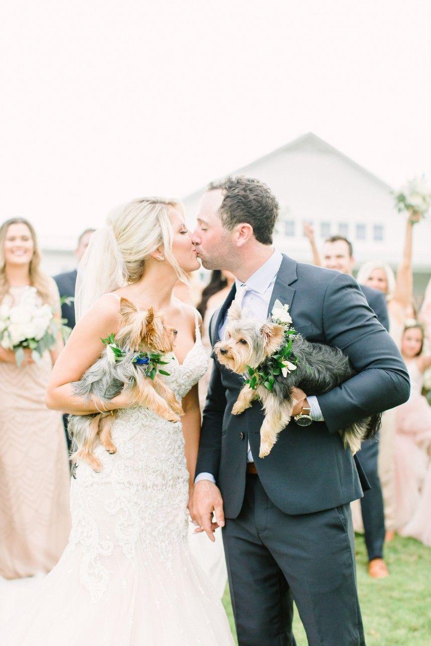 modern farmhouse inspired wedding from kate elizabeth