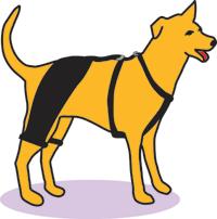 Hip Hound Brace Dog Braces Dog Leg Dog Wheelchair