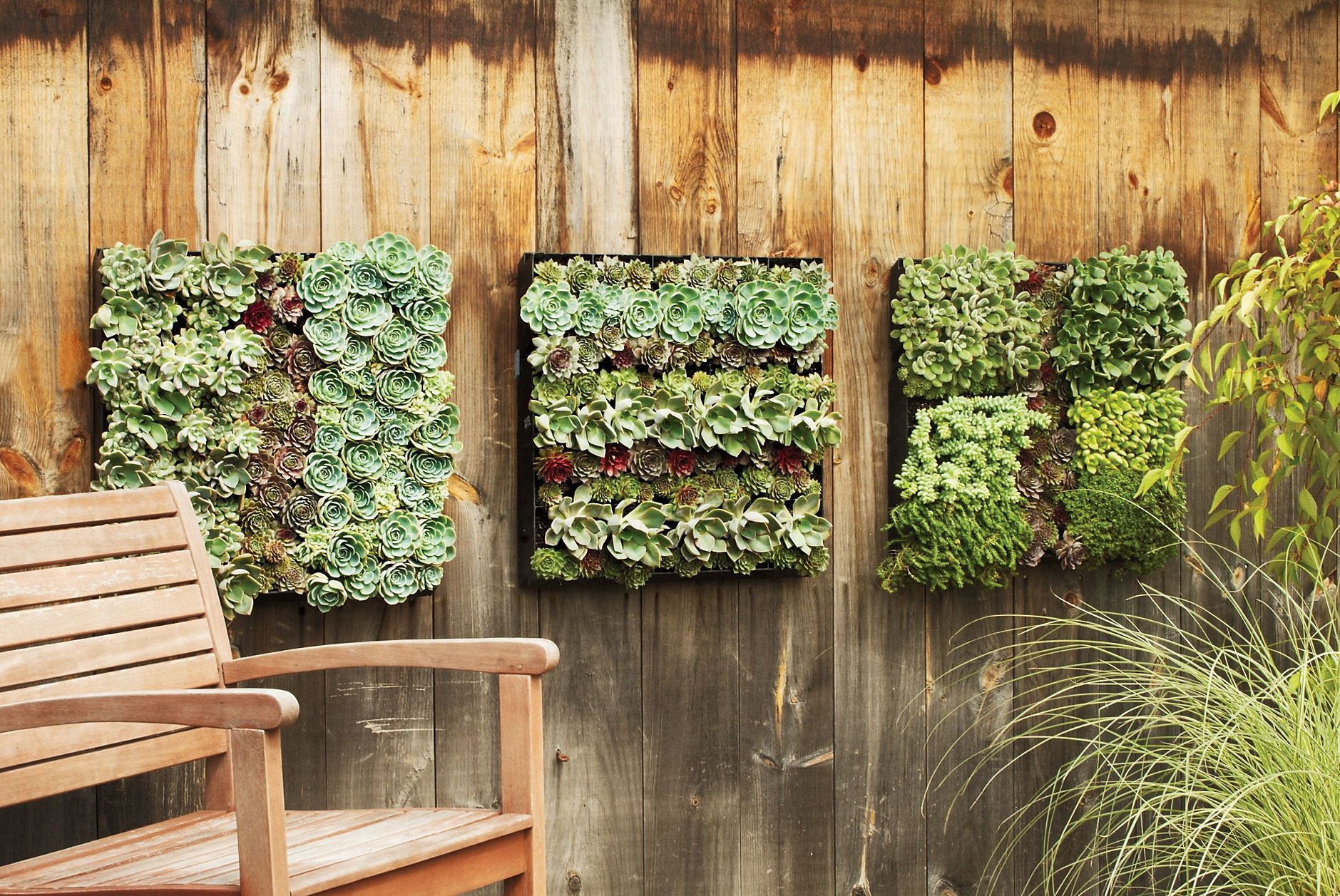 Outdoor Living Wall Panel Grid Living Wall Planter Fence Decor Backyard Fences