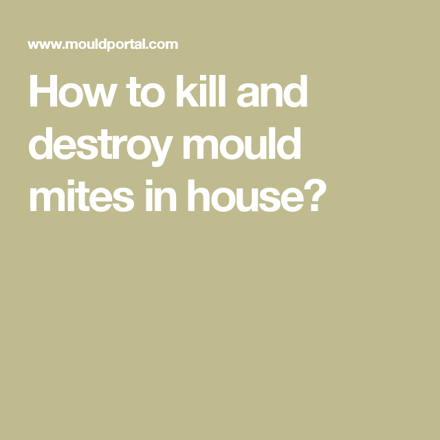 How To Kill And Destroy Mould Mites In House Home Inspection