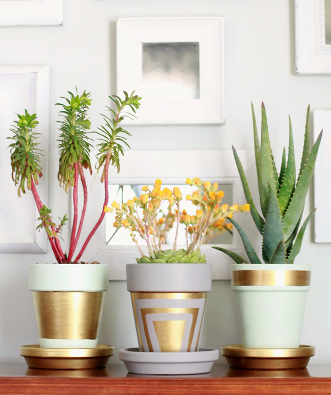 10 sehr sch ne und lustige ideen wie man terrakotta pflanzt pfe verzieren kann diy. Black Bedroom Furniture Sets. Home Design Ideas