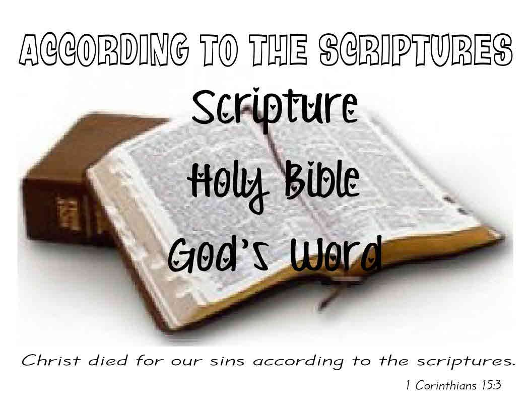 A Is For According To The Scriptures