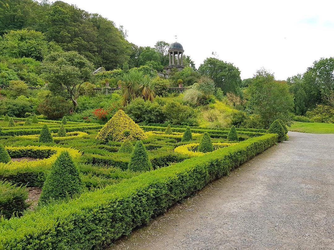 Irlands Garten Buxus Summer Ireland Garten Garden Gardener Jardin Giardino Blossom Irishgarden Cork G Garten Design Garten Gartengestaltung