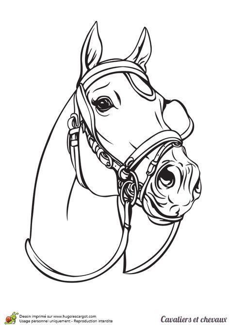 La Tête Dun Cheval Dattelage à Colorier Pencil Drawings