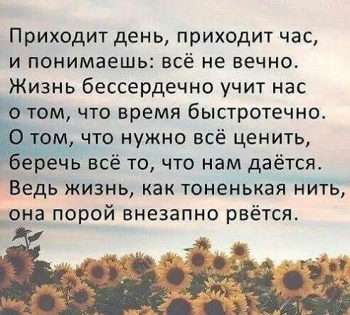 russische sprüche über das leben