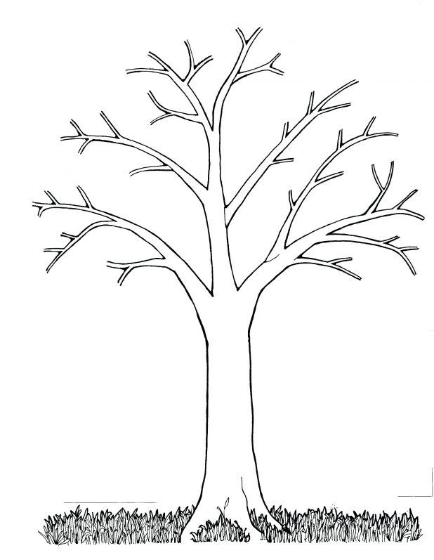 Family Tree Coloring Pictures My Pages Share Bare