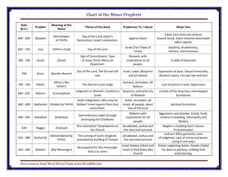 jesus the king study guide pdf
