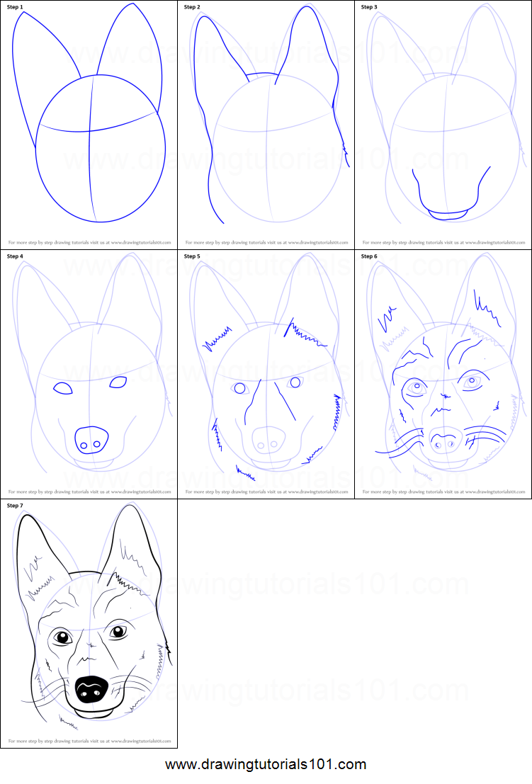 How to Draw German Shepherd Dog Face printable step by ...