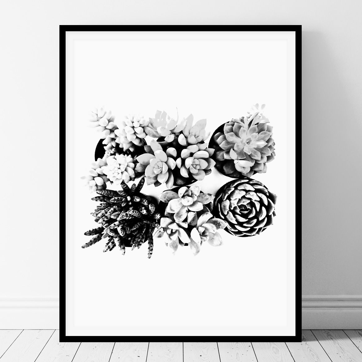 Black and white succulents printable