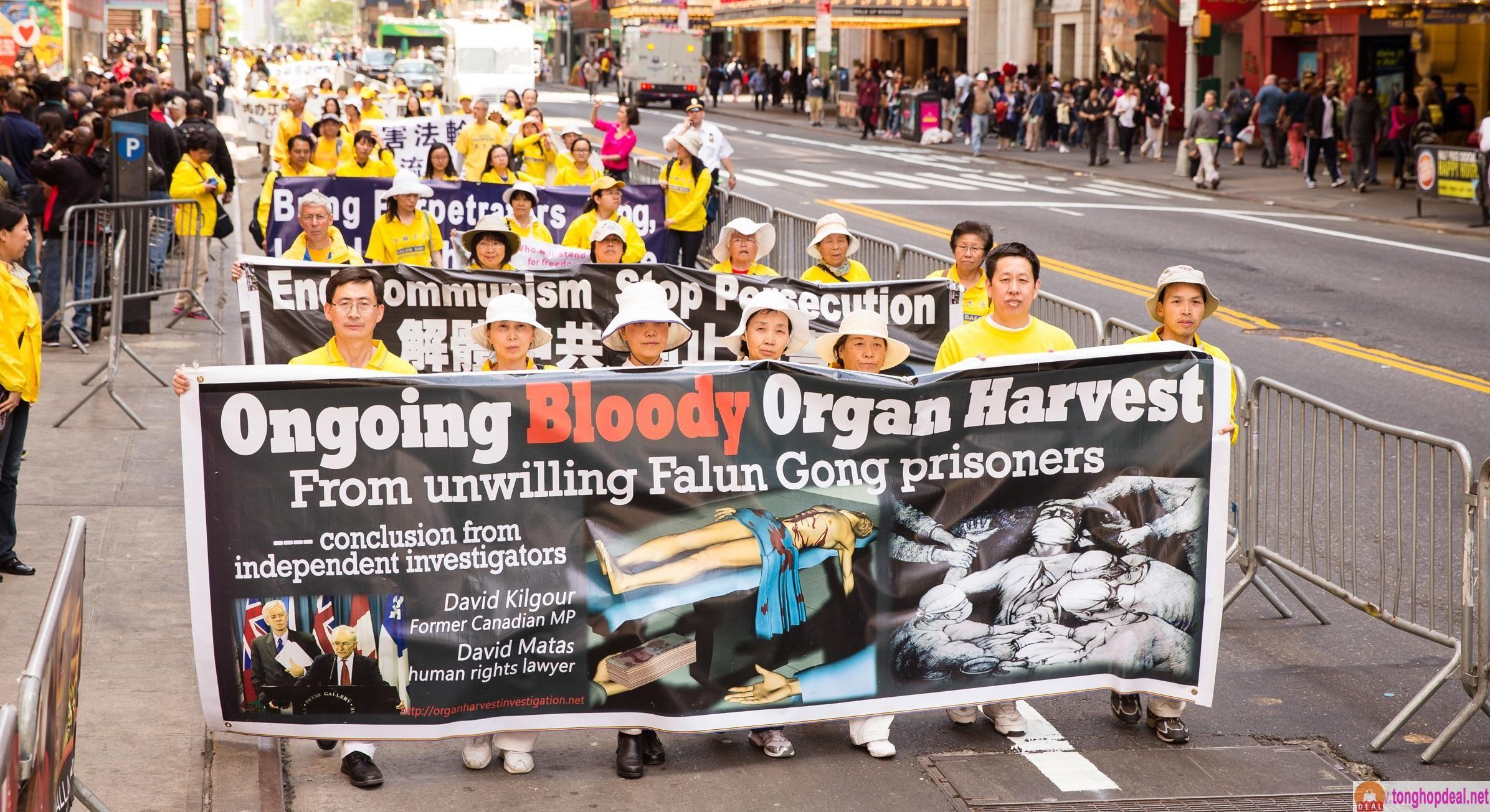 Ngày Thế giới chống mổ cướp tạng 1/10: Tội ác vẫn đang bành