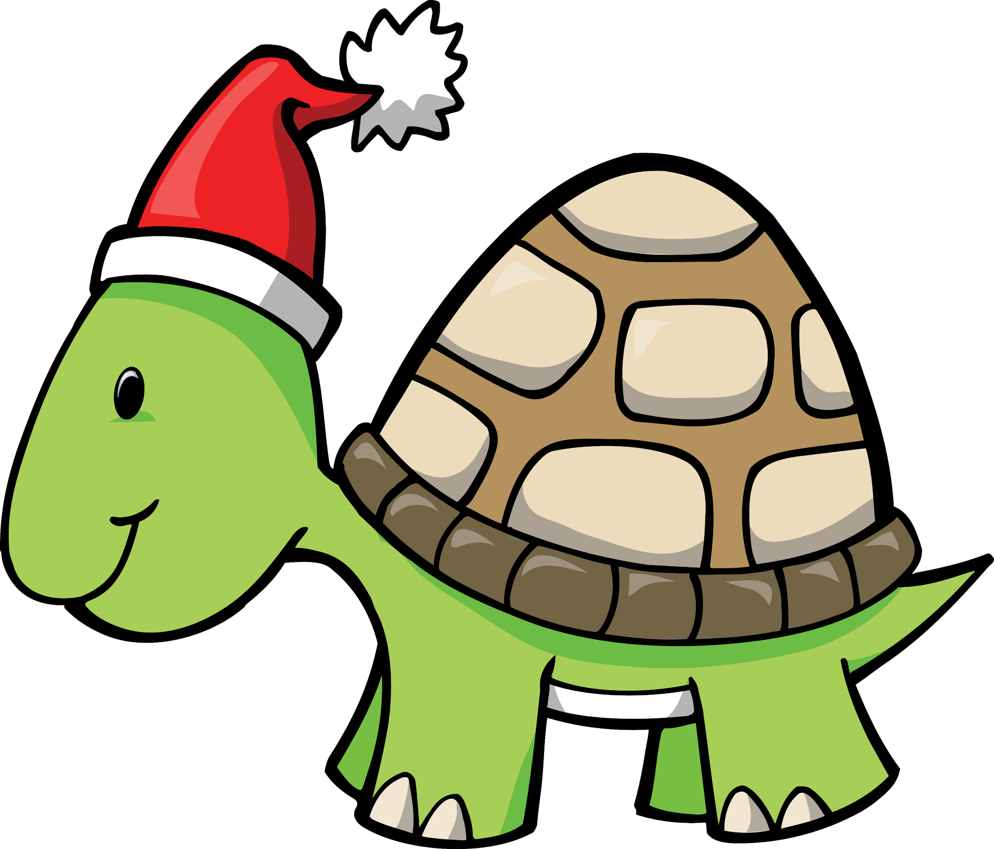 Cartoon Turtle Png Turtle Png Image And Clipart Cartoon Turtle Png Images Clip Art