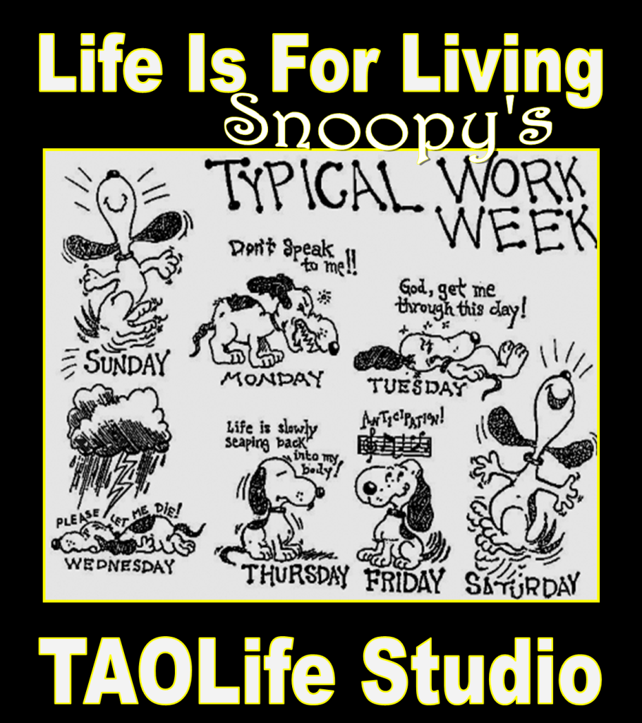 TAOLife Snoopy's Typical Work Week Charles Schulz