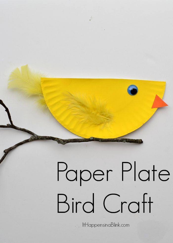 Paper Plate Bird  | Quick and  easy kid's craft tutorial