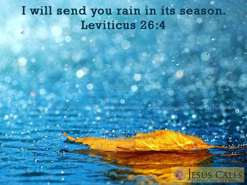 Rainy Season Wallpapers With Quotes Hd I Will Send You Rain In Its Season Leviticus 26 4 Rain