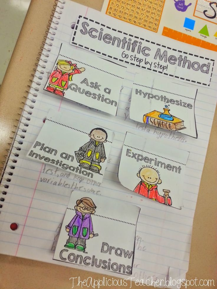 Free Scientific Method graphic organizer for interactive