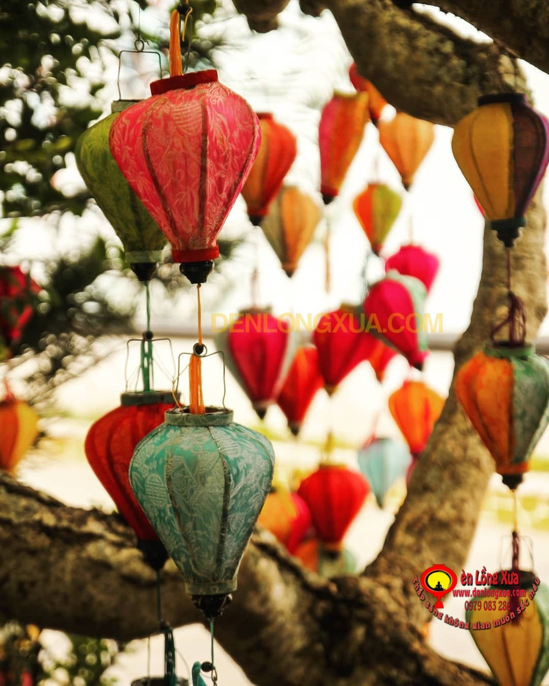 ánh lồng đèn đẹp in 2020 | Holiday decor, Hoi an, Christmas ornaments
