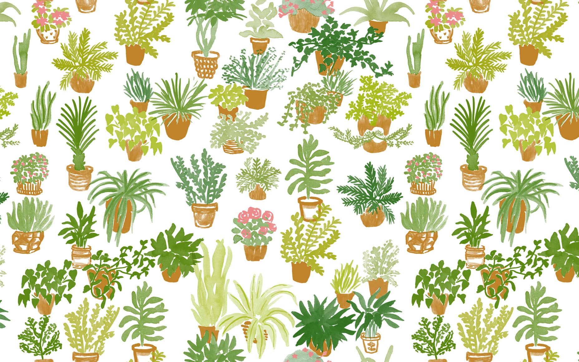 #desktop #wallpaper #plants | Art: Desktop Wallpaper in ...